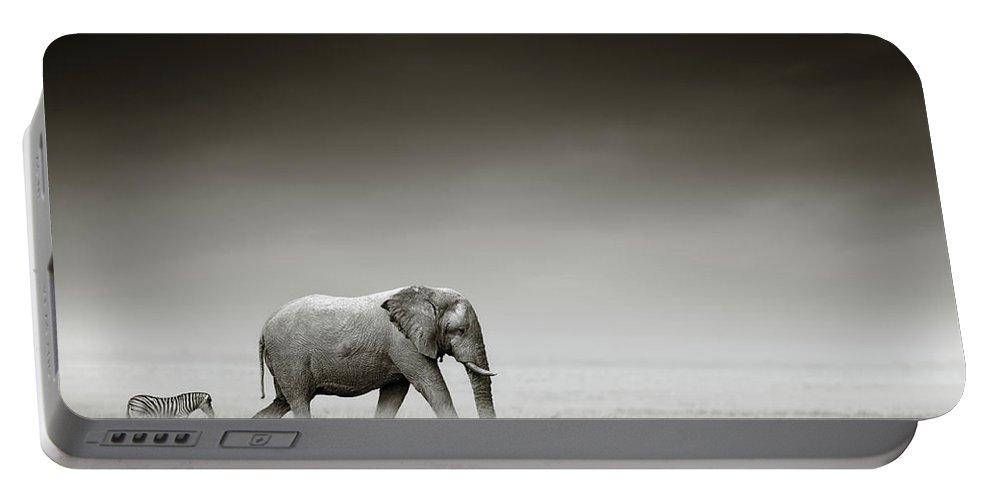 Elephant; Zebra; Behind; Follow; Huge; Big; Grass; Grassland; Field; Open; Plains; Grassfield; Dark; Sky; Together; Togetherness; Art; Artistic; Black; White; B&w; Monochrome; Image; African; Animal; Wildlife; Wild; Mammal; Animal; Two; Moody; Outdoor; Nature; Africa; Nobody; Photograph; Etosha; National; Park; Loxodonta; Africana; Walk; Namibia Portable Battery Charger featuring the photograph Elephant With Zebra by Johan Swanepoel
