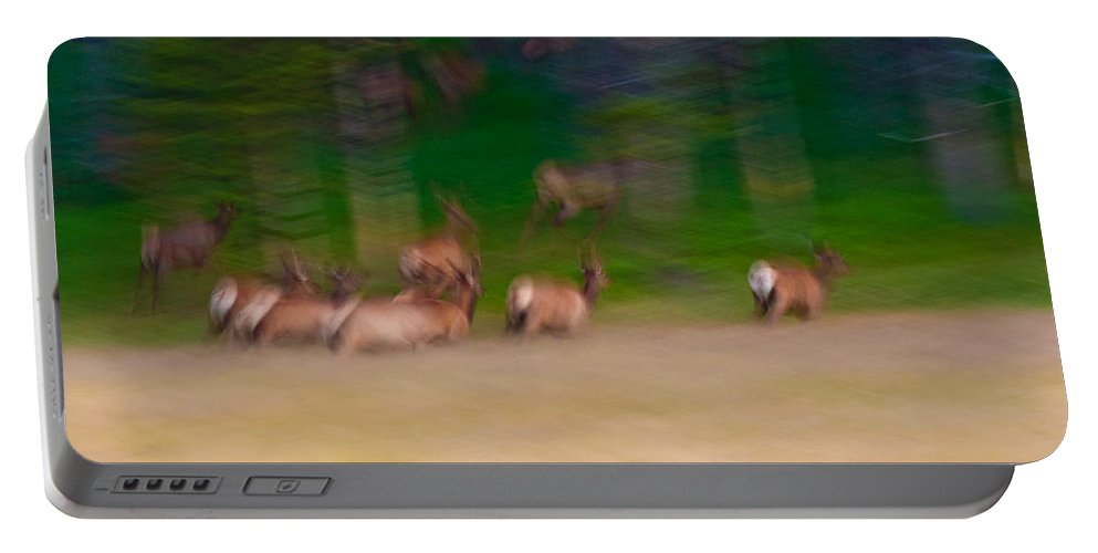 Yellowstone Portable Battery Charger featuring the photograph Elk On The Run by Sebastian Musial