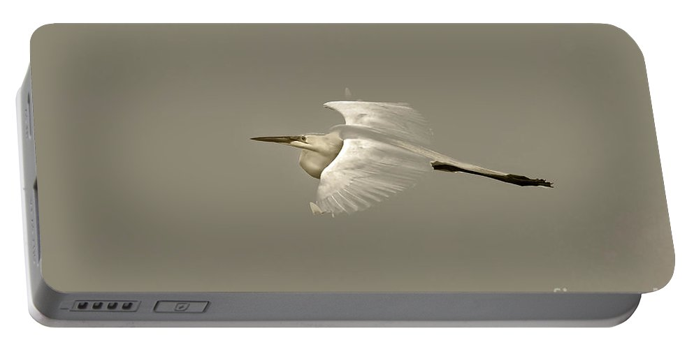 Bird Portable Battery Charger featuring the photograph Elusive Giant Egret by Deborah Benoit