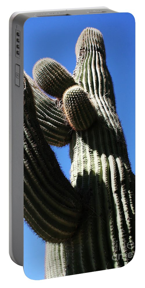 Cactus Portable Battery Charger featuring the photograph Embracing by Jamie Lynn