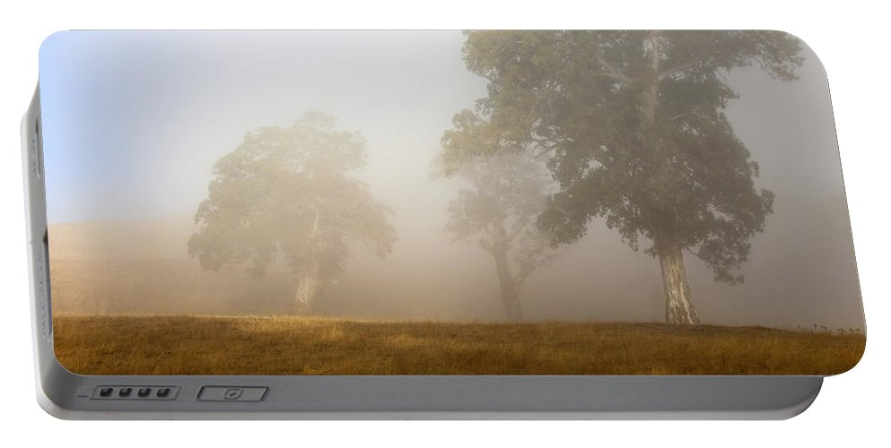 Gum Tree Portable Battery Charger featuring the photograph Emerging From The Fog by Mike Dawson