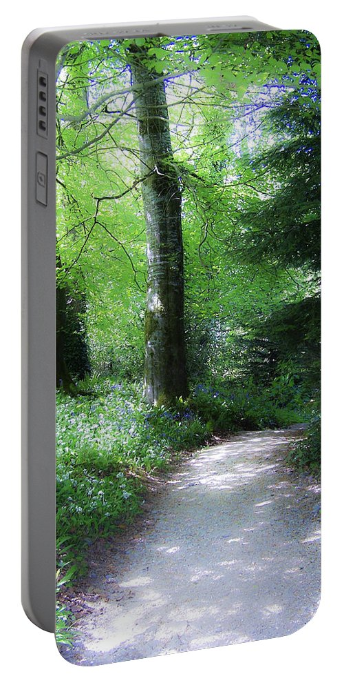 Ireland Portable Battery Charger featuring the photograph Enchanted Forest At Blarney Castle Ireland by Teresa Mucha
