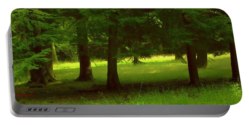 Nature Portable Battery Charger featuring the photograph Enchanted Forest by Linda Sannuti