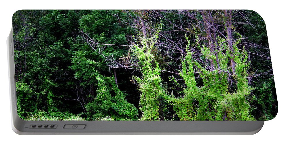 Pine Falls Manitoba Vines Landscape Portable Battery Charger featuring the photograph Enchanted by Joanne Smoley