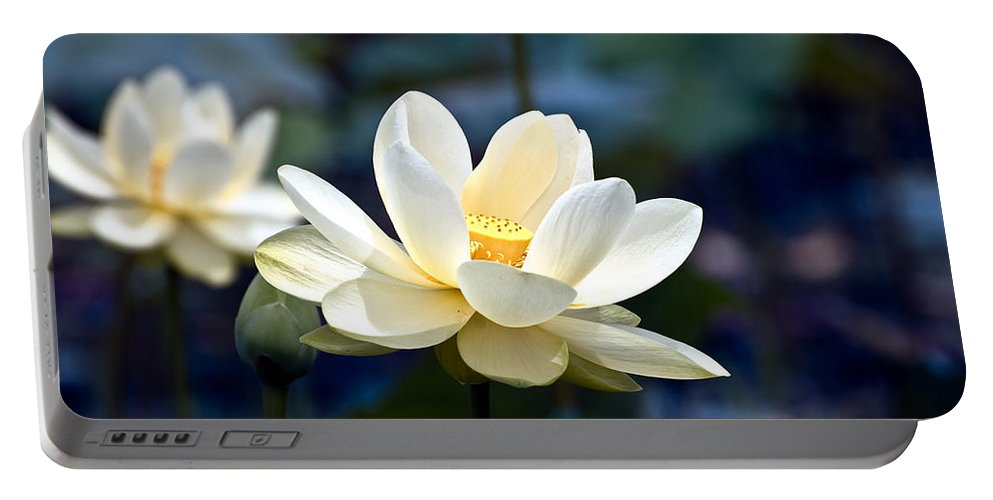 Lotus Portable Battery Charger featuring the photograph Enchanting Lotus by Rich Leighton