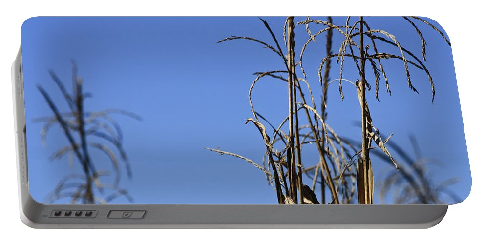 Corn Portable Battery Charger featuring the photograph End Of Season by Teresa Mucha