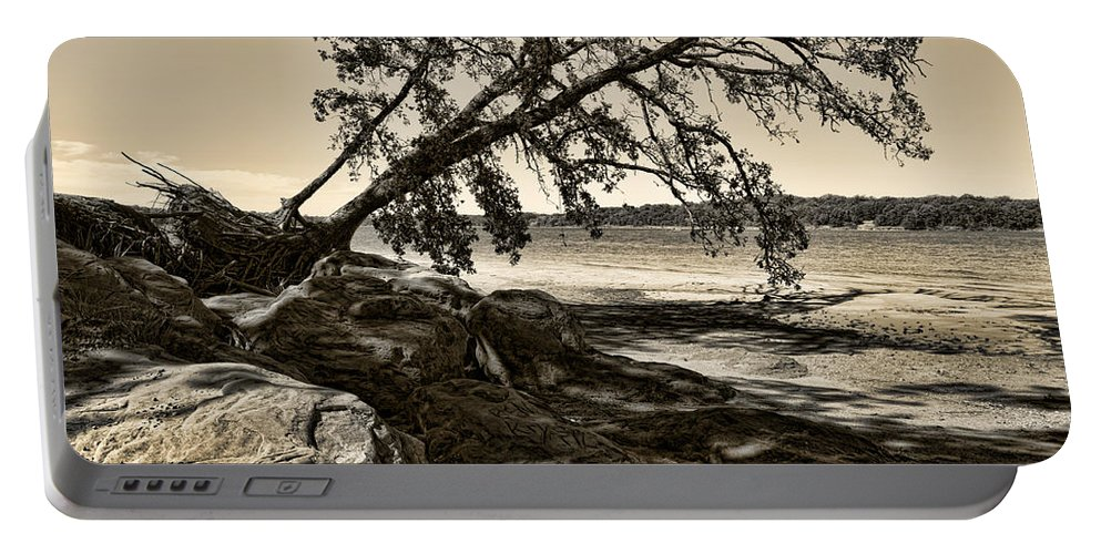 Tree Portable Battery Charger featuring the photograph Erosion - Anselized by Ricky Barnard