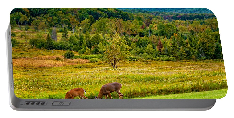 Canaan Valley Portable Battery Charger featuring the photograph Evening In The Valley 2 by Steve Harrington
