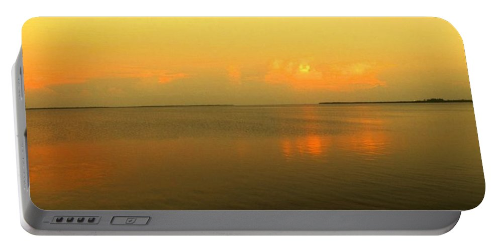 Florida Portable Battery Charger featuring the photograph Evening Shades by Ian MacDonald