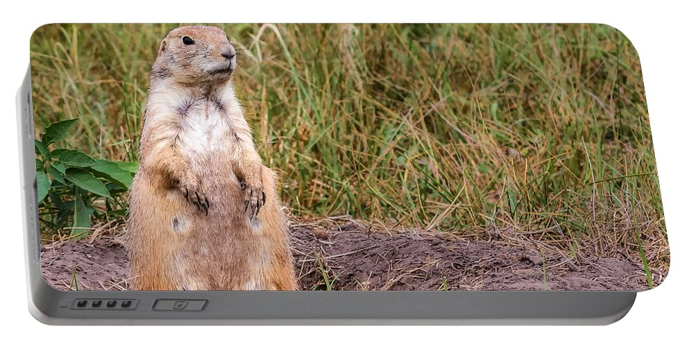 Prairie Portable Battery Charger featuring the photograph Ever Watchful by Jayme Spoolstra