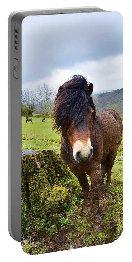 Landscape Portable Battery Charger featuring the photograph Exmoor by Sophie Roberts Maddison