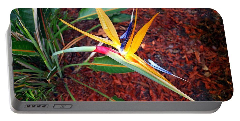 Exotic Portable Battery Charger featuring the photograph Exotic Bird Of Paradise by Joyce Dickens