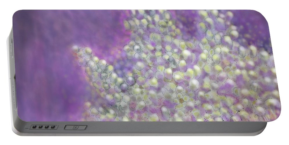 Abstract Portable Battery Charger featuring the digital art Expodential Growth by Ian MacDonald