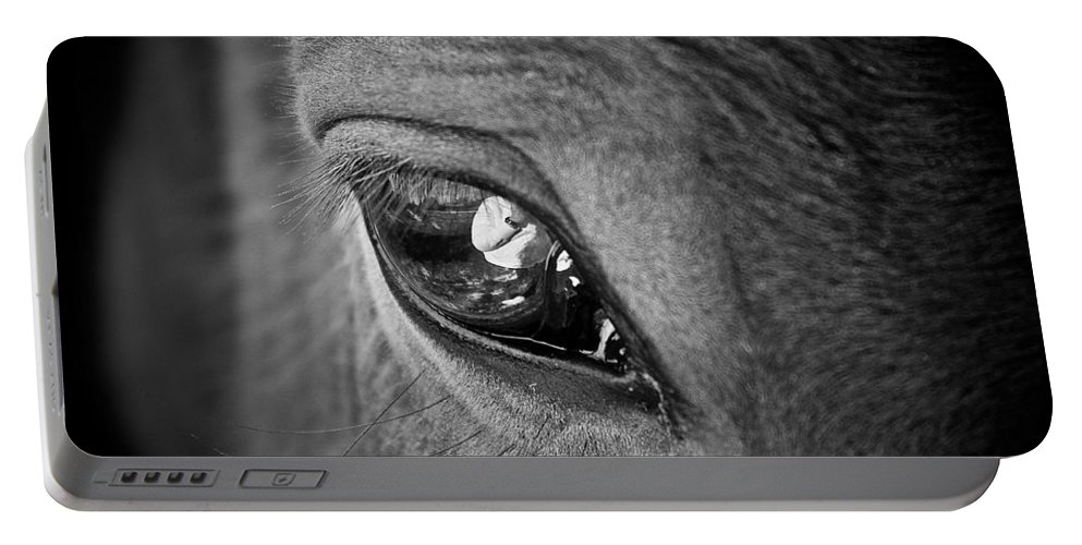 Eye Portable Battery Charger featuring the photograph Eye See You by Hannah Breidenbach