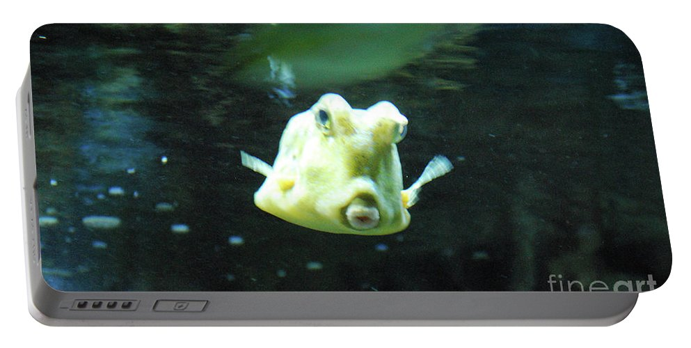 Longhorn-cowfish Portable Battery Charger featuring the photograph Face Of A Horned Boxfish Swimming Underwater by DejaVu Designs