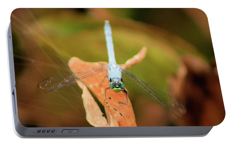 Dragonfly Portable Battery Charger featuring the photograph Face Of The Dragon by Karl Ford