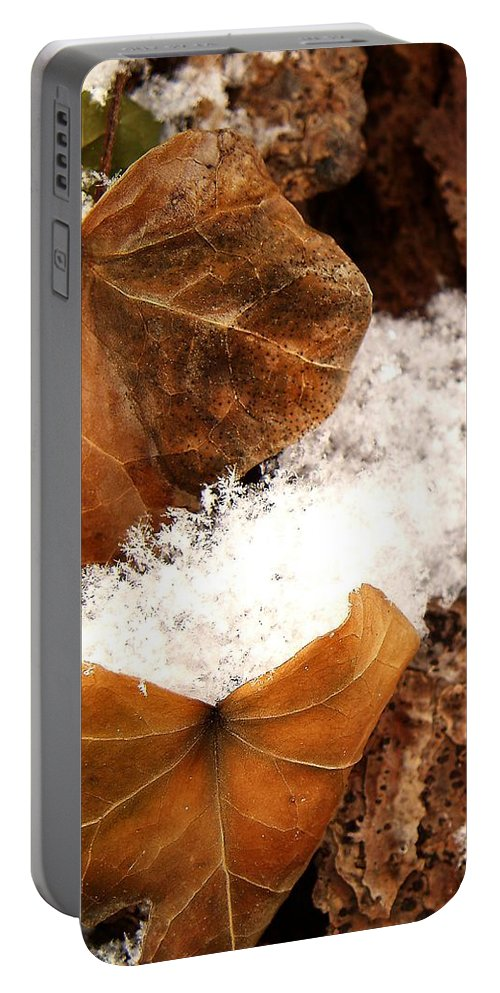 Fall Portable Battery Charger featuring the photograph Fall And Winter by Gaby Swanson