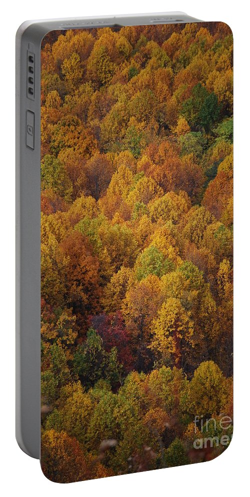 Fall Portable Battery Charger featuring the photograph Fall Cluster by Eric Liller