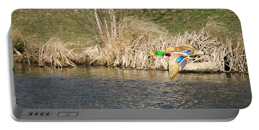 Ducks Portable Battery Charger featuring the photograph Fall Flight By Chris White by C H Apperson