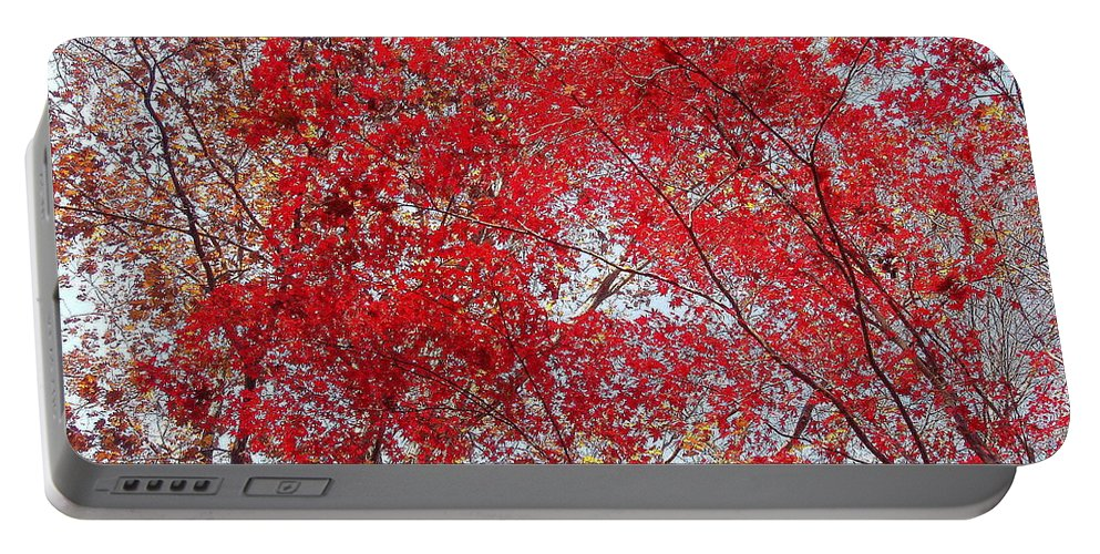 Leaves Portable Battery Charger featuring the photograph Fall Foilage by Deborah Crew-Johnson