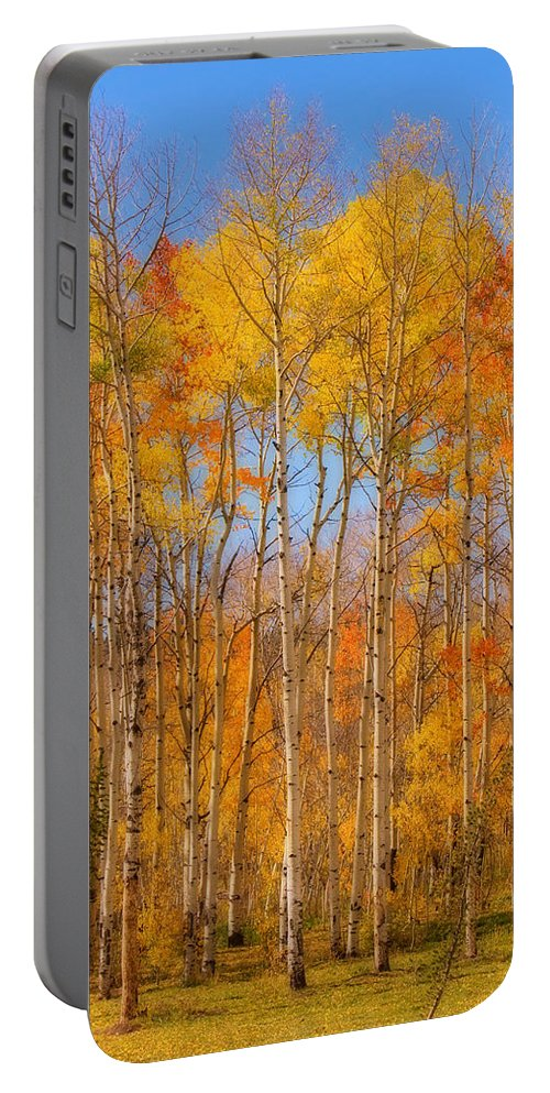 Trees Portable Battery Charger featuring the photograph Fall Foliage Color Vertical Image Orton by James BO Insogna