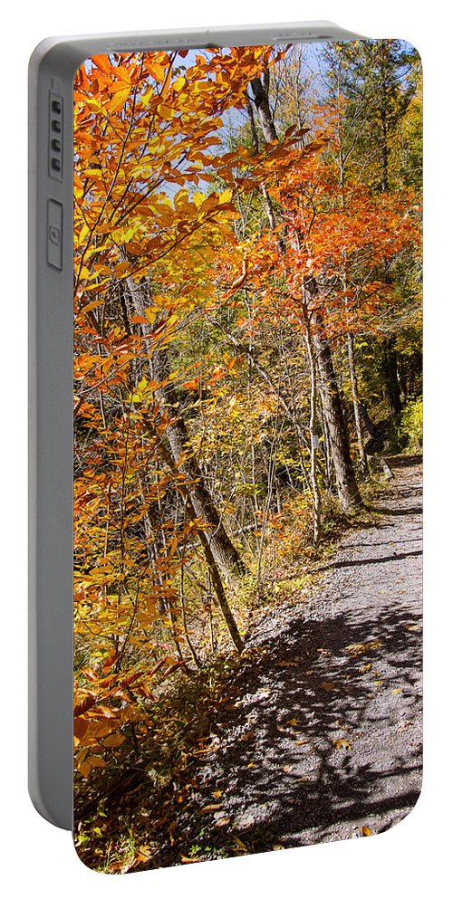 New York Fall Foliage Portable Battery Charger featuring the photograph Fall Foliage by George Fredericks