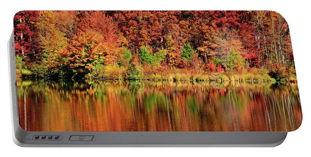 Fall Portable Battery Charger featuring the photograph Fall Foliage by Ronda Ryan