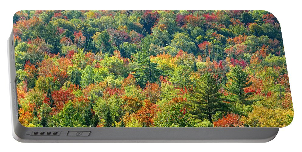 Adirondack Mountains Portable Battery Charger featuring the photograph Fall Forest by David Lee Thompson