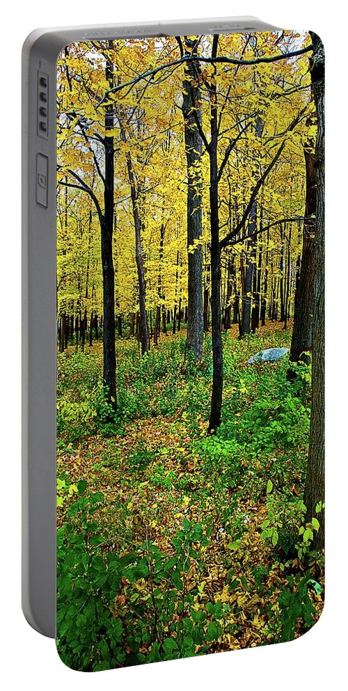 Fall Portable Battery Charger featuring the photograph Fall Fusion by Burney Lieberman