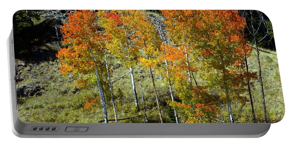 Portable Battery Charger featuring the photograph Fall In Colorado by Marty Koch