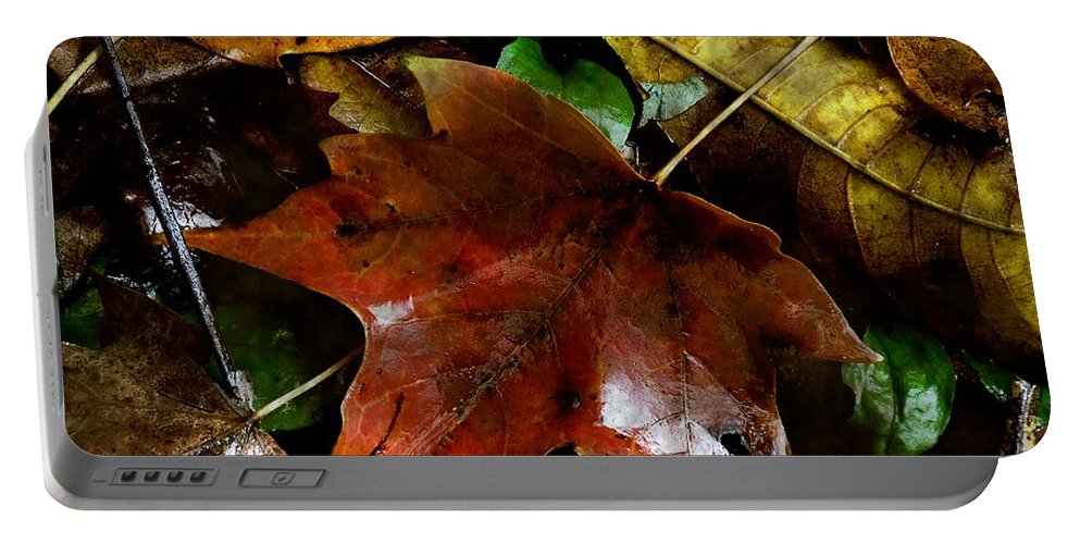 Autumn Portable Battery Charger featuring the photograph Fall Into Fall by RC DeWinter
