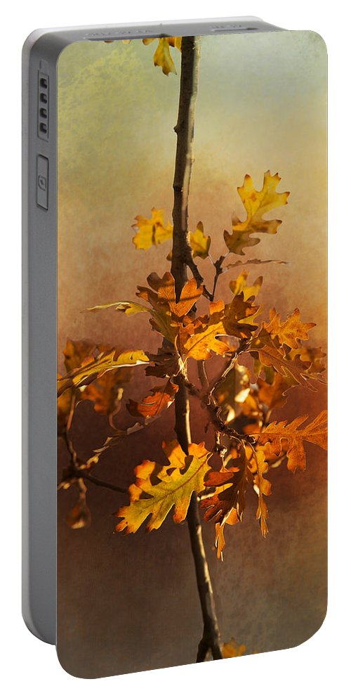Fall Portable Battery Charger featuring the photograph Fall Oak Leaves by Lynn Bauer