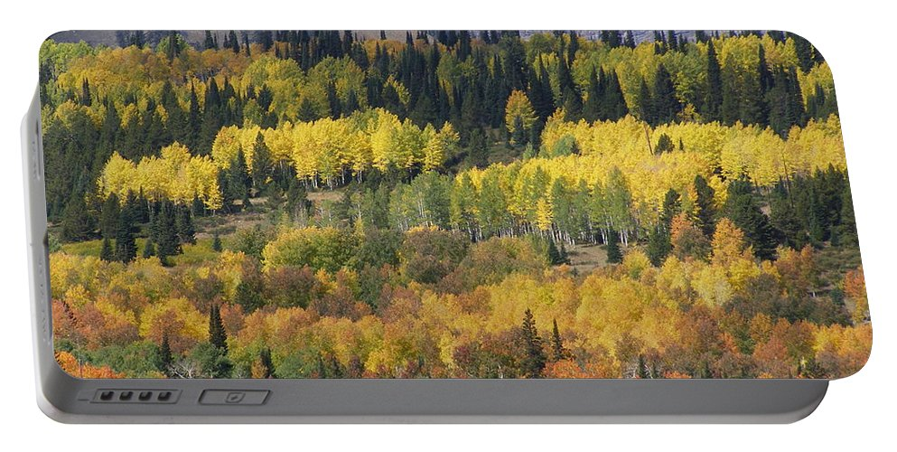 Fall Portable Battery Charger featuring the photograph Fall On The Greys River by DeeLon Merritt