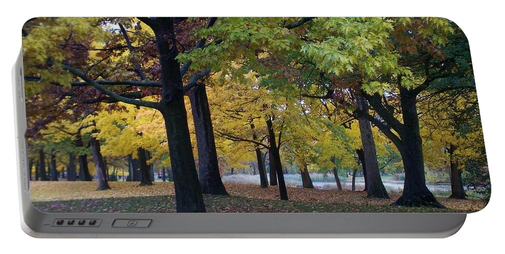 Fall Portable Battery Charger featuring the photograph Fall Series 14 by Anita Burgermeister