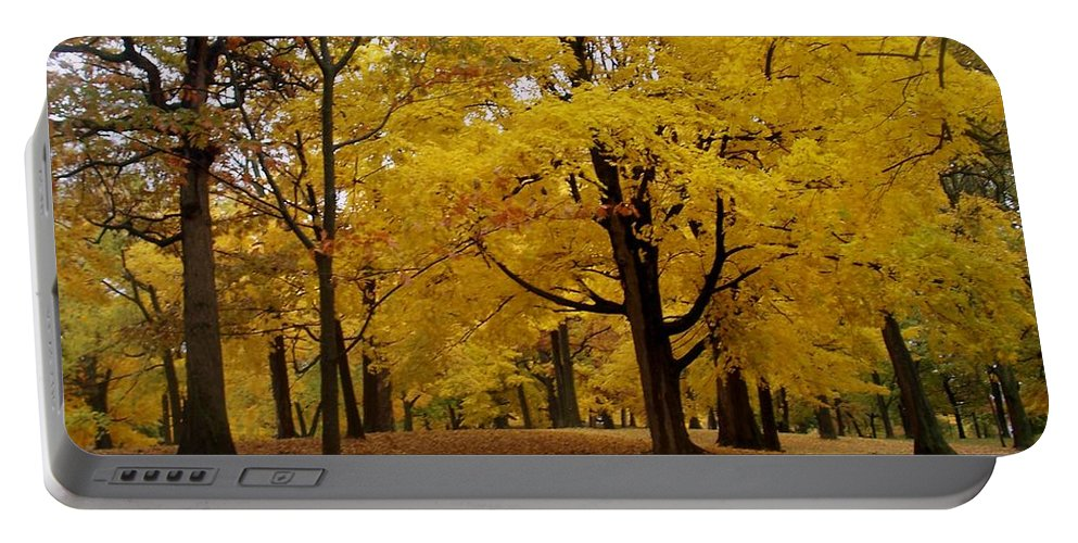 Fall Portable Battery Charger featuring the photograph Fall Series 5 by Anita Burgermeister