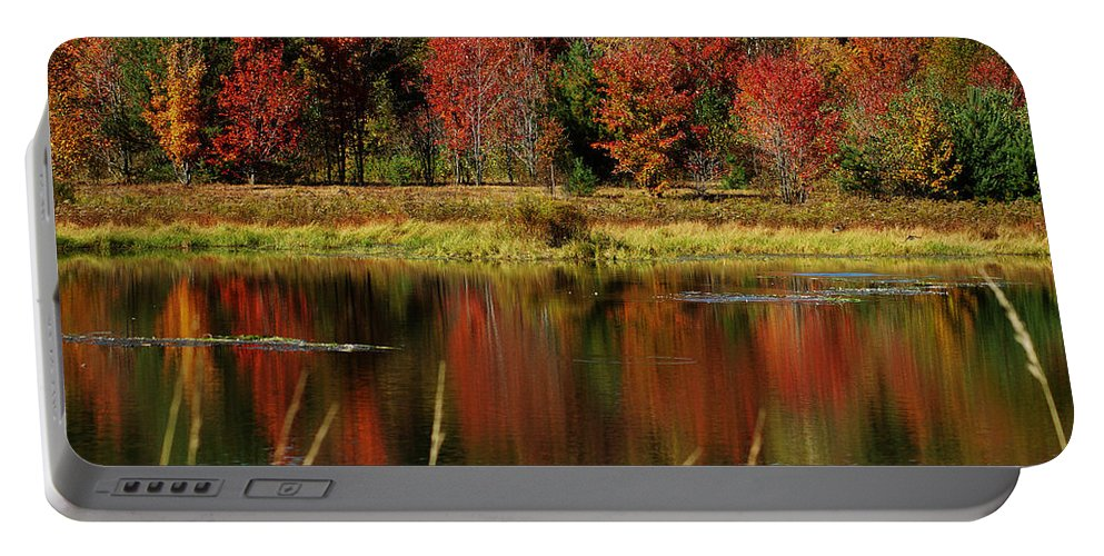 Autumn Portable Battery Charger featuring the photograph Fall Splendor by Linda Murphy