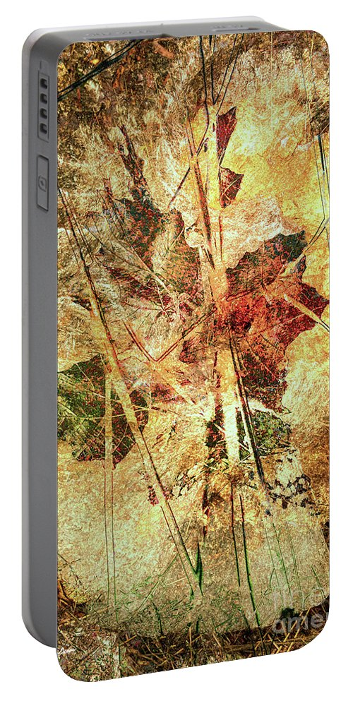 Fall Portable Battery Charger featuring the digital art Fall Treasures by Georgianne Giese