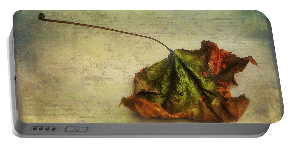 Photo Portable Battery Charger featuring the photograph Fallen Down In Summer by Jutta Maria Pusl