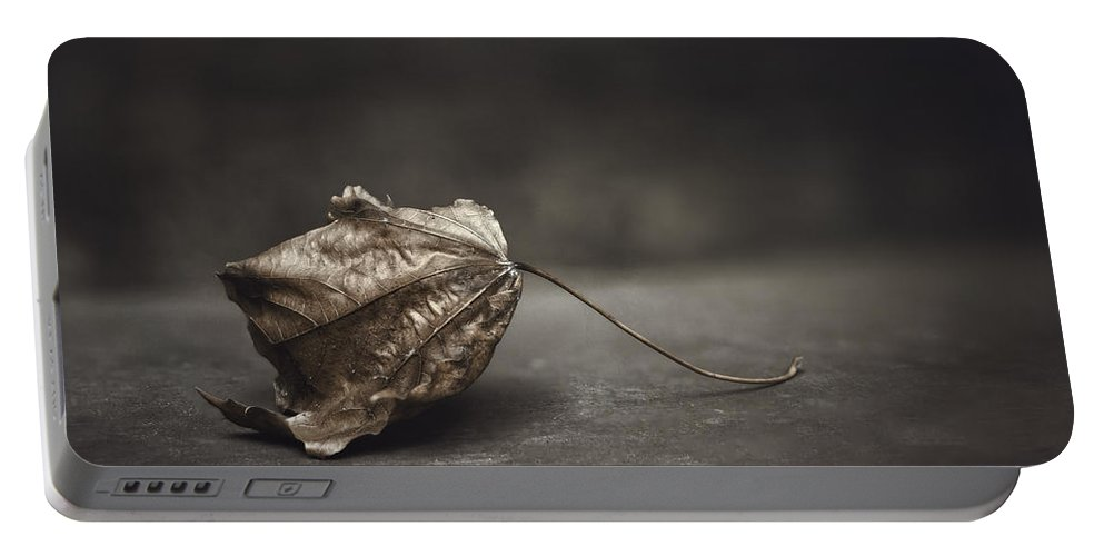 Maple Portable Battery Charger featuring the photograph Fallen Leaf by Scott Norris