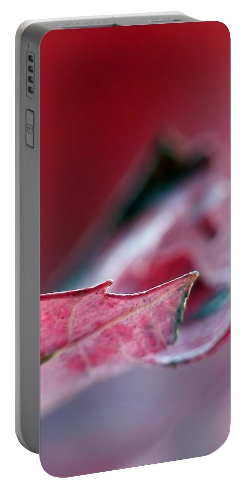 Abstract Portable Battery Charger featuring the photograph Falling I by Lauren Radke