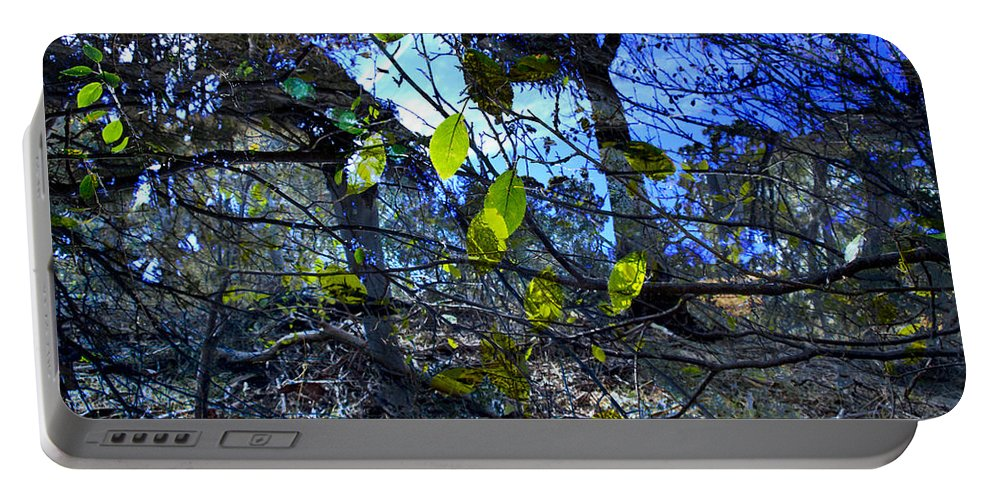 Leaves Portable Battery Charger featuring the photograph Falling Leaves by Kelly Jade King