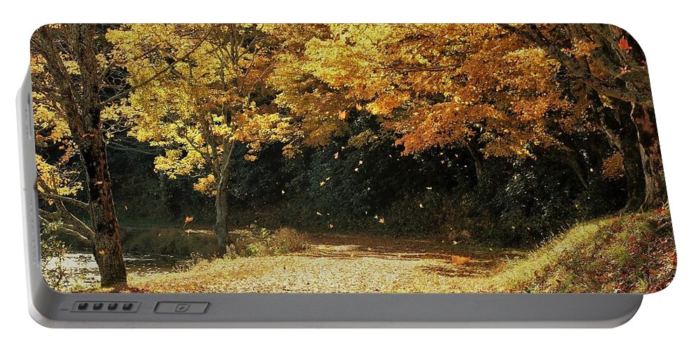 Blue Ridge Mountains Portable Battery Charger featuring the photograph Bass Lake Falling Leaves by Vice Photo