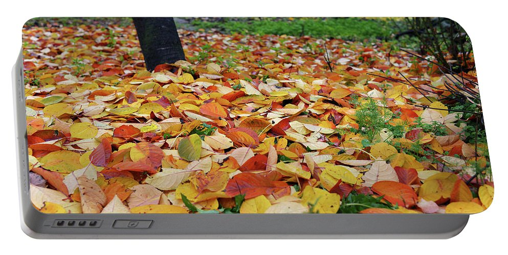 Falling Leaves Portable Battery Charger featuring the photograph Falling Leaves by Tamar Mirianashvili