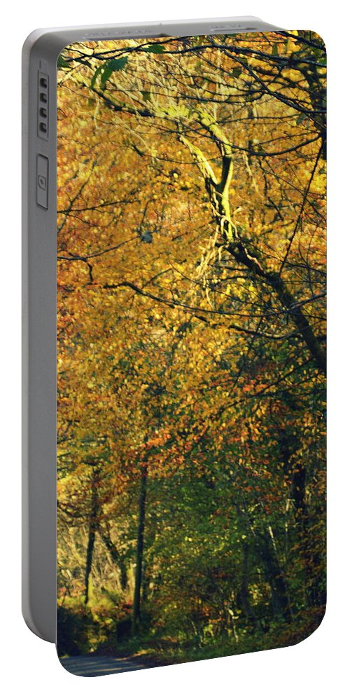 Fall Portable Battery Charger featuring the photograph Falls Gold by Andy Thompson