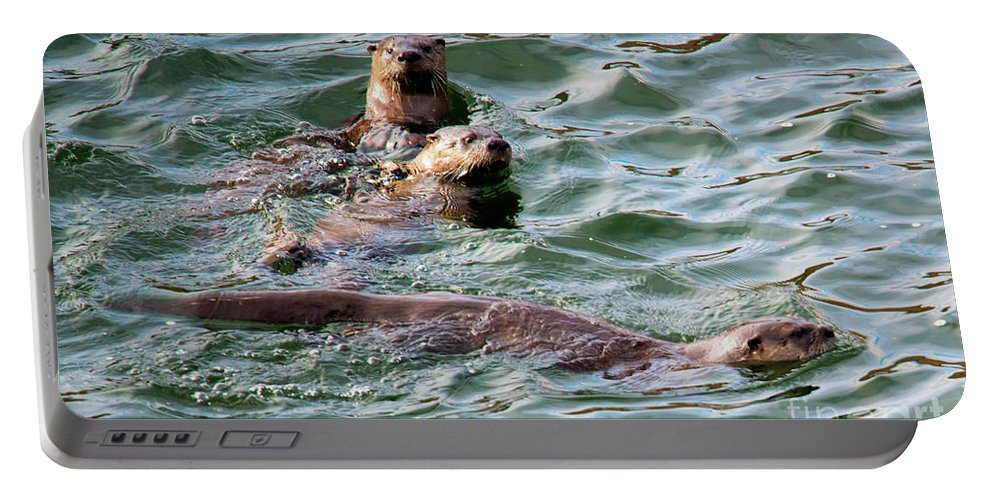 Otters Portable Battery Charger featuring the photograph Family Play Time by Mike Dawson