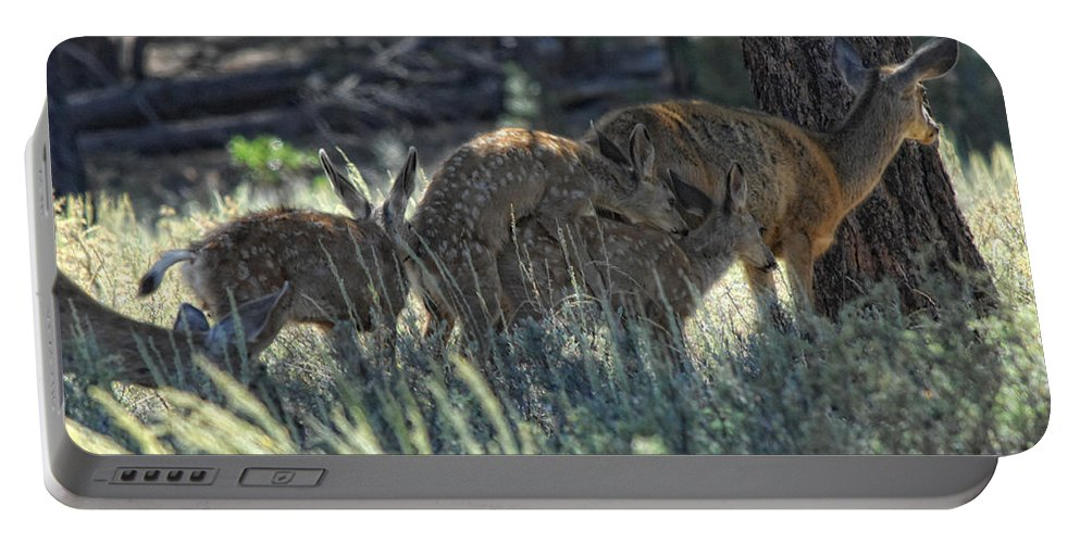 Deer Portable Battery Charger featuring the photograph Family Values by Donna Blackhall