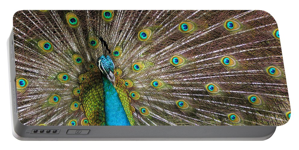 Avian Portable Battery Charger featuring the photograph Fanfare by Alana Thrower