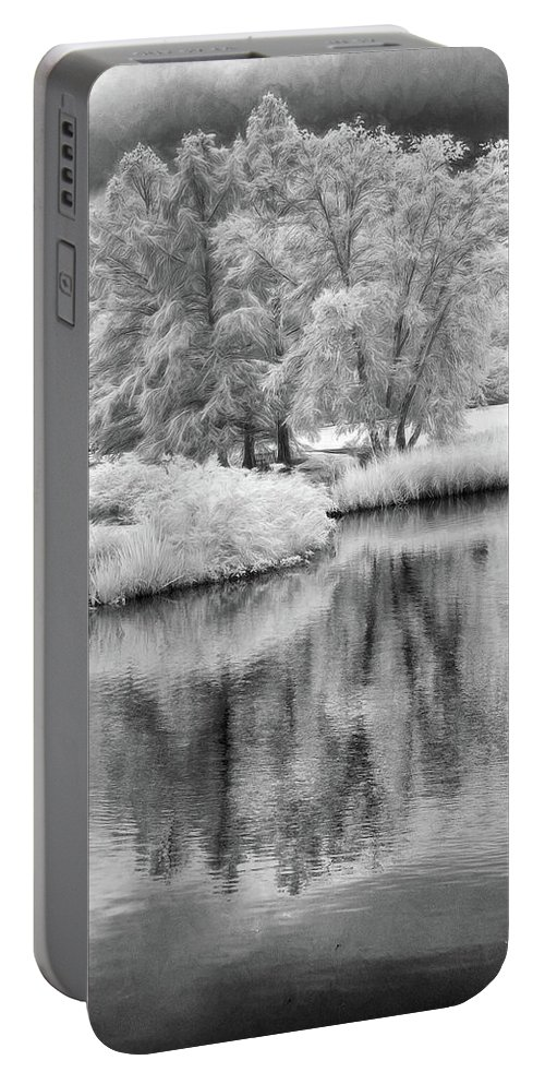 Cox Arboretum Portable Battery Charger featuring the photograph Fantasy Tree Reflection by Jim Simpson
