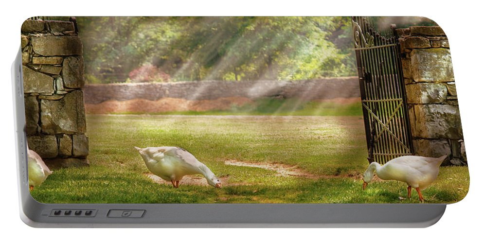 Savad Portable Battery Charger featuring the photograph Farm - Geese - Birds Of A Feather - Panorama by Mike Savad