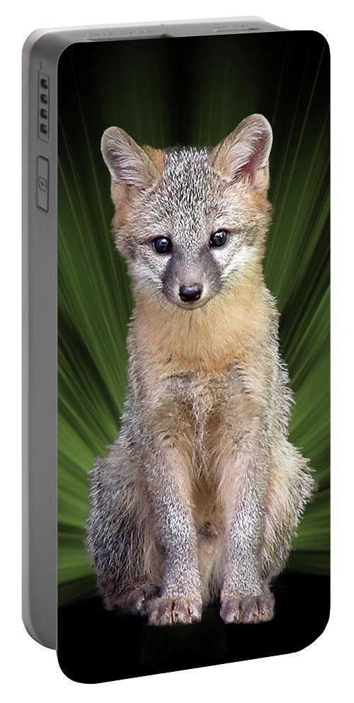 Faunagraph Portable Battery Charger featuring the digital art Faunagraph by Torie Tiffany